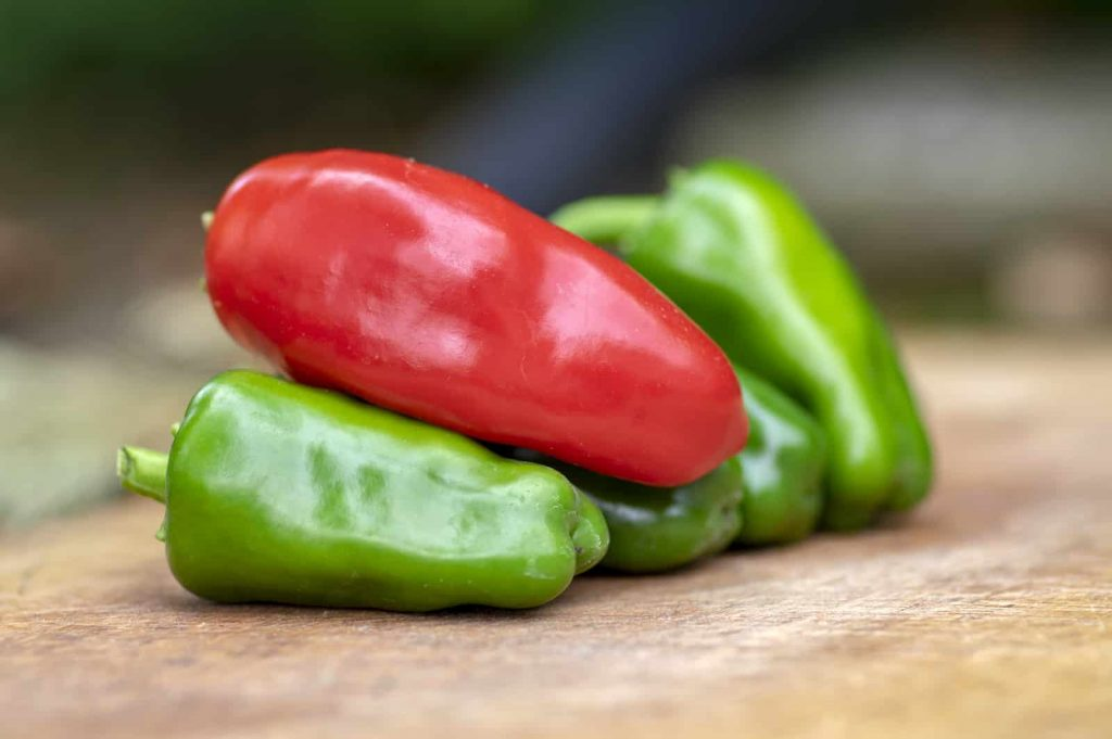 The Hottest Peppers In The World - WorldAtlas