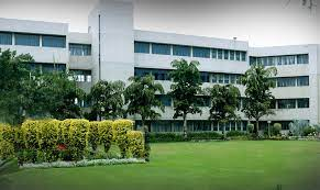 Discover the top schools in Noida wisely